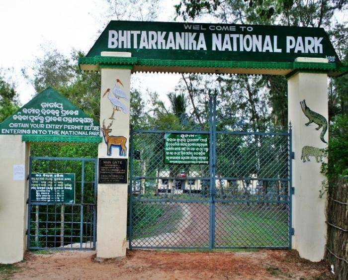 Bhitarkanika Sanctuary Orissa