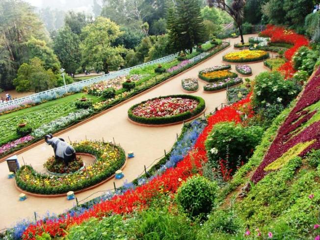 Zakir Hussain Rose Garden Chandigarh