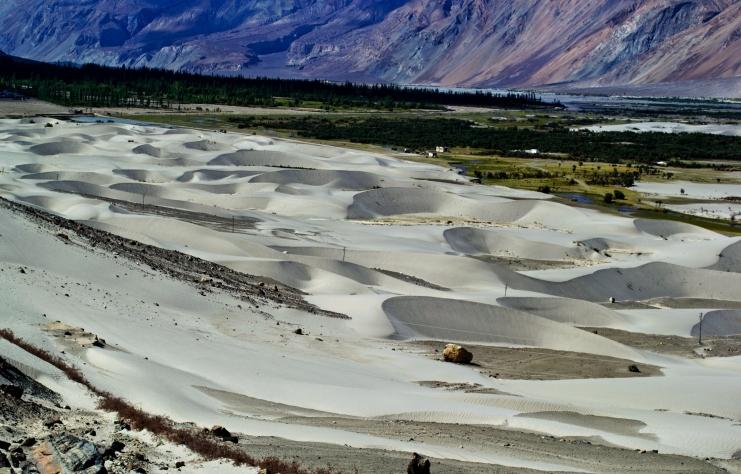 Nubra Sand Dunes