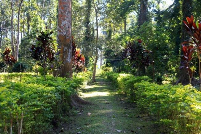 Botanical Garden Shillong